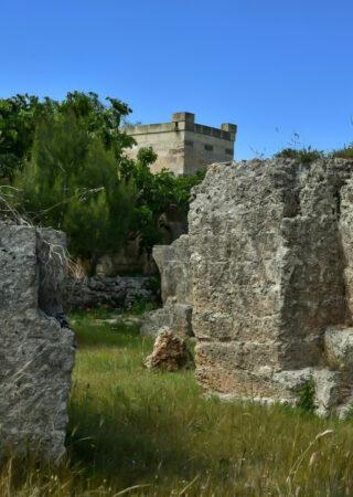 fata-bianca-casa-vacanze-salento-giardino-botanico-cave